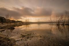 Reflejos de invierno. (Amparo Hervella) Tags: embalsedevalmayor comunidaddemadrid españa spain paisaje agua cielo reflejo nube naturaleza atardecer árbol largaexposición d7000 nikon nikond7000