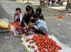 Picking Onions (cowyeow) Tags: hunan china composition chinese asia asian village town market farmersmarket onion onions tomato tomatoes people candid family girl girls kids shopping daughter daughters young street