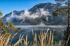 Plansee im Herbst (stefangruber82) Tags: alpen alps tirol tyrol mountainlake bergsee see lake hernst fall fog nebel mountains berge