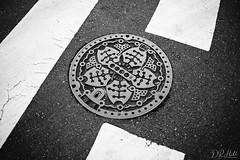 Minato Manhole Cover (D. R. Hill Photography) Tags: manhole manholecover マンホール蓋 sewer drain cover road street decorative tokyo 東京 minato 港区 japan 日本 asia eastasia travel blackandwhite monochrome nikon nikond750 d750 nikon35mmf18ged 35mm primelens fixedfocallength