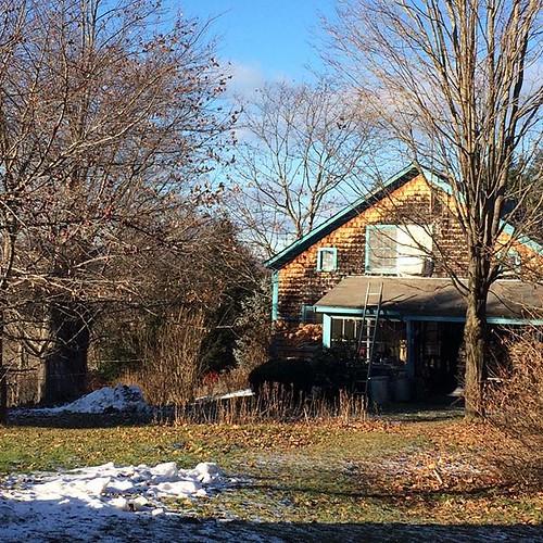 One bright December day #sunshine #old house #barebranches #snowbank #amityfarmbatik