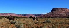 Wild-West-Romantik pur (langkawi) Tags: cowboys desert wüste mountains berge lasalmountains utah canyonlands reiten horseback horses