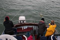 Collecting plastic samples 4 (MarBio Abbie) Tags: plastic microplastic trawl marine biology marinebiology stem science boat sea estuary plankton fieldwork pollution beachcleanproject