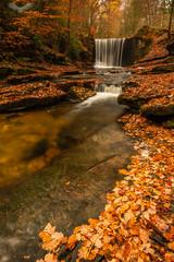 Plas Power waterfall (Andy Davis Photography) Tags: plaspower waterfall nantmill melinynant riverclywedog woodland forest autumn leaves river water rocks canon leefilters wwwandydavisphotographycom