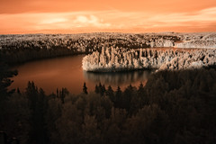 Landscape in Infrared Image (Digikuvaaja) Tags: finland beautiful beauty brown colorful fall forest infrared lake landscape mysticism nature orange outdoors park red rural scenics serene summer sunlight sunny tree trees vibrant water woods