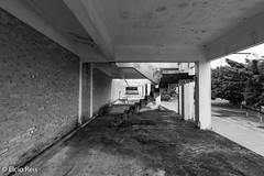Old Pavilion (elcio.reis) Tags: brasil sãopaulo urban nikon pb bw blackwhite brazil urbex architecture arquitetura sãobernardo urbano prédios build sãobernardodocampo br