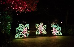 Bellingrath Magic Christmas in Lights (ciscoaguilar) Tags: bellingrath christmas theodore alabama lights