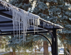 Yup It's Cold (Sue90ca) Tags: canon 6d icicles cold brrrr