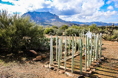 Pinal Arizona Cemetery (Buck--Fever) Tags: pinalarizona pinalcemetery superiorarizona arizona arizonadesert arizonapassages gravemarkers graves centralarizona canon60d tamron18400lens picketpostmountain arizonaskies