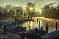 Alba in lanca (alfvet) Tags: parcodelticino veterinarifotografi fiume ticino river fiumeticino alba sole sunrise natura barche boats