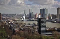 (Uno100) Tags: rotterdam holland euromast sky scraper line 2019 building netherlands maas water nieuwe kop van zuid nh hotel erasmus brug