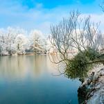 Winter park reflection in a frozen lake thumbnail