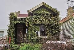 abandoned house - hawthorn (75kombi) Tags: minoltasrt303