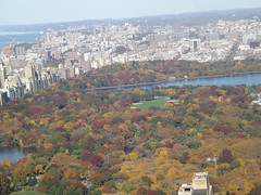 Aerial View, Autumn View, Central Park,Top of The Rock Observation Deck, New York City (lensepix) Tags: aerialview autumnview centralpark topoftherock observationdeck newyorkcity