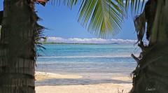 A window on paradise! (BoraBoraPhotosVideos) Tags: borabora frenchpolynesia island tahiti paradise southpacific holidays bestvacations photooftheday picoftheday wedding polynesian honeymoon wonderfulplaces