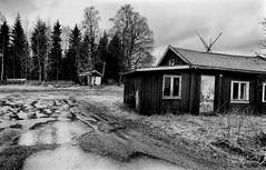 rainy day (Yaman Konuralp) Tags: monochrome noir blackandwhite analog vintage nikon nikonf 35mm norway travel landscape diy hc110 rodinal standdevelopment agfa100 apx norge journey nikkor iso noise grain
