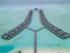 Maldives (Lee Armstrong Jones) Tags: nalaguraidhoo southariatoll villahotel sunislandresort indianocean maldives holiday hotels canon5dmkiii 24105mm ef1740mmusm bluesea bluesky beachholiday stingrays sharks seaplane dronephotos mavicpro 100400mm gopro hero5 wideangle water ocean spa resort bats waterbungalows south ari atoll villa hotel sun island indian canon 5d mkiii ef1740mm usm blue sea sky beach drone photos mavic pro hero 5 bungalows