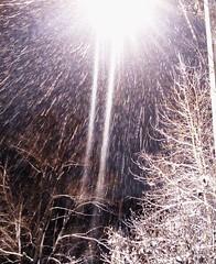 Snowfall under the lantern (msergeevna) Tags: snowfall snow winter streetlamp lamp talvi lumi снег снегопад зима winterbeauty
