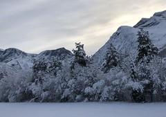 Vinterland -|- Winter land (erlingsi) Tags: erlingsi iphone erlingsivertsen winter bjørdal sunnmøre vinter snø snow