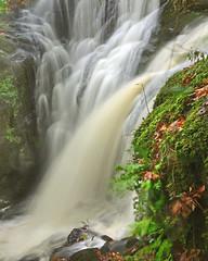 Fairlie and Southannan (wheehamx) Tags: waterfall fairlie southannan long exposure glen ayrshire
