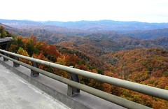 "3711ex ""Bridge to Nowhere"" vistas-- Smokies (jjjj56cp) Tags: bridgetonowhere foothillsparkway views vistas communityday walking touring grandopening tennessee tn townsend wearsvalley walland autumn fall november colors foliage smokies gsm greatsmokymountains gsmnp greatsmokymountainsnationalpark p1000 coolpixp1000 nikoncoolpixp1000 jennypansing bridge"