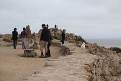 IMG_10935 (mudsharkalex) Tags: california pacificgrove pacificgroveca loverspointpark