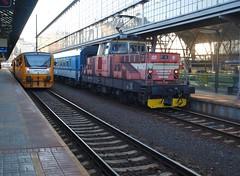 Prague Hlavni Nadrazi - 10-10-2018 (agcthoms) Tags: czechrepublic prague praha station railways trains cd ceskedrahy czechrailways class111 111032
