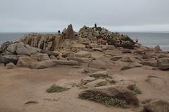 IMG_10944 (mudsharkalex) Tags: california pacificgrove pacificgroveca loverspointpark