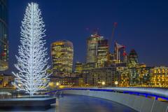 Piú alto e luminoso / Taller and brighter (City of London, London, United Kingdom)(Buon Natale!!!:Merry Christamas!!!) (AndreaPucci) Tags: cityoflondon london uk christmas tree morelondon andreapucci