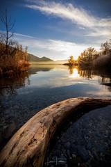 Silence (Luca_Fabbro_Photography) Tags: canon wideangle rokinon lightroomcc landscape photography sunset winterlight 6dmkii frozenmoment