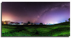 Moc chau Milky Way (Yellow Autumn) Tags: