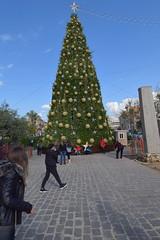 DSC_8074 (eliedata) Tags: emily aboujaoude elie yolla boujaoude jbeil byblos lebanon