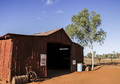 Camel Station, Northern Territory, Australia. (GrahamL63) Tags: camelstation australia northern territory barn sand tree eucalypt clouds