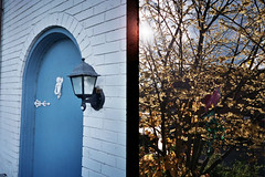 Beyond the Blue Door (Jetcraftsofa) Tags: olympuspenee3 zuiko2835 superia400 35mm halfframecamera availablelight bluedoor beyond dream dimension thegate awakening diptych pointandshootcamera filmphotography
