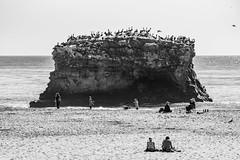 Natural Bridges (Eric Bloecher) Tags: black white bw ocean sky water people rock birds seagulls flock man woman child children beach sunbathing sunny sun bright blackwhite blackwhitephotos