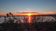 Sunset [1484] (my.travels) Tags: sunset ankara lake lakeside gölbaşı turkey scenery sun sunshine tr