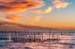 Albufera de Valencia (Miguel Mora Hdez.) Tags: atardecer cielo paisaje sky valencia albufera spain españa nikon d90 agua sea mar nubes clouds