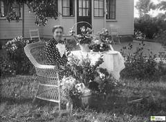 tm_6279 (Tidaholms Museum) Tags: svartvit positiv porträtt trädgård bostadshus exteriör korgstol chair möbel uppvaktning celebration