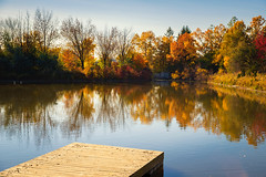 (A Great Capture) Tags: canon eos 6d mark ii 2470mm agreatcapture agc wwwagreatcapturecom adjm ash2276 ashleylduffus ald mobilejay jamesmitchell toronto on ontario canada canadian photographer northamerica torontoexplore fall autumn automne herbst autunno otoño 2018 landscape paisaje paysage landschaft colours colors colourful colorful light sun sunny sunshine sunlight digital dslr lens natur nature naturaleza natura naturephotography naturethroughthelens scenery scenic waterscape wet water agua eau reflection mirror glass reflections outdoor outdoors outside woods trees tree arbre forest wald árvore autumnleaves
