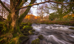 River Rothay (Lee Harris Photography) Tags: river landscape tree water longexposure rocks trees light november outdoor lakedistrict uk contrast nikon nature