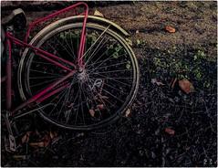 #InspiraciónBdF86: Triste sola y abandonada a su suerte (celemirosotichez) Tags: spiritofphotography inspiraciónbdf86