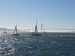 and the sun shines on the bay (kenjet) Tags: gg bridge goldengate goldengatebridge bay thebay sanfranciscobay ocean pacific pacificocean water sailing boat boats