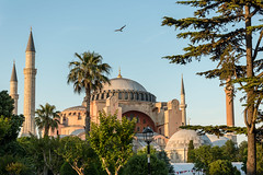 Hagia Sophia (djcotto1971) Tags: istanbul carigrad constantinople europe asia nikon nikkor d5500 christianity church cathedral mosque islam muslim religion religious byzantine blue sky minaret palm architecture sultanahmet fatih