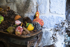 SITIOS DE BURGOS (jramosvarela) Tags: bodegon 2016 burgos frias florseca dryflower stilllife