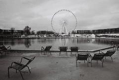 Jardin des Tuileries (leniners) Tags: 2017 france paris tour bw nb noir black white kodak trix 400 kodaktrix400 leica m6 leicam6