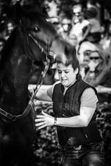 Awed (Tom Levold (www.levold.de/photosphere)) Tags: afsvrzoomnikkor70300 cologne d700 köln nikon race racetrack rennbahn bw sw porträt portrait horse pferd