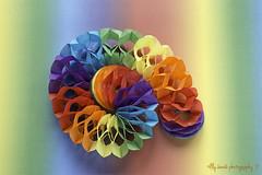 #Spiral, paper/rock/scissors (aenee) Tags: aenee nikond7100 nikkor50mm118d 7daysofshooting paper smileonsaturday spiral spiraal bunting slinger colourful kleurig papier quote pse14 dsc8082 20181203