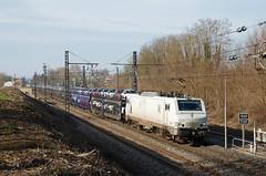 BB 37525 et fret (SylvainBouard) Tags: europorte railway train e37500