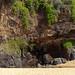 Tropical source Secret beach Kauai Hawaii