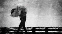 Bad Weather (Corinaldesi Roberto) Tags: moody abstract atmospheric man male alone reflection rain raining wet weather one landscape daytime holiday umbrella solitude walking storm black and white puddle distortion distorted person